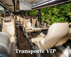 Alquiler minibus VIP